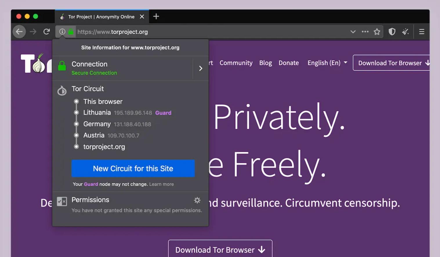 Der TOR Browser - Zugang zum Darknet erhalten